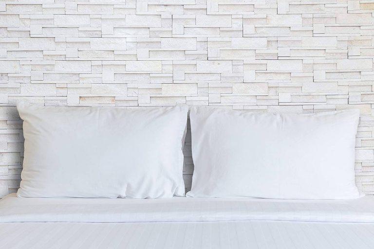 Continental Bedding Premium 100% White Goose Down Pillow
